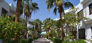 Hotel Marlin Inn Beach Resort ****