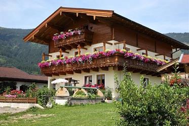 Penziony v Maishofenu