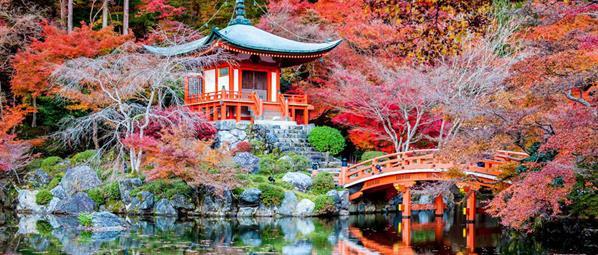 Екскурзия до Япония - Страната на Изгряващото Слънце