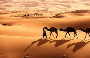 Нова Година 2020 в Египет - Кайро и Хургада