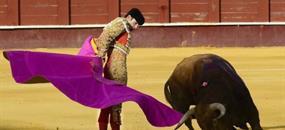 ŠPANĚLSKO - Andalusie (letecky) 2021