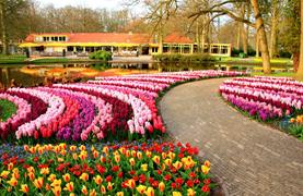 Okruh Holandskem na Den královny - Keukenhof, Amsterdam, sýry i Zaanse Schans - 28/31