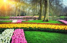Okruh Holandskem na Den královny - Keukenhof, Amsterdam, sýry i Zaanse Schans - 4/31