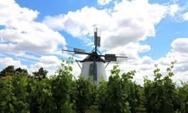 Vinobraní v Retzu