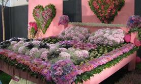 TULLN- výstava květin