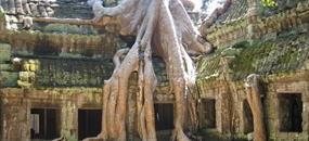 Chrámy Angkoru a tropický ostrov Koh Rong s českým průvodcem
