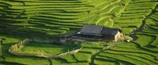 Delta Mekongu a přírodní krásy jižního Vietnamu