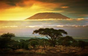 Rozšířený komfortní safari okruh