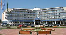 Hotel Park Inn, Sárvar, Vánoční pobyt