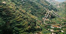Madeira - podzimní jednodenní túry