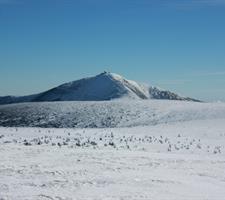 Krkonoše na sněžnicích