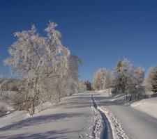 Šumava na sněžnicích