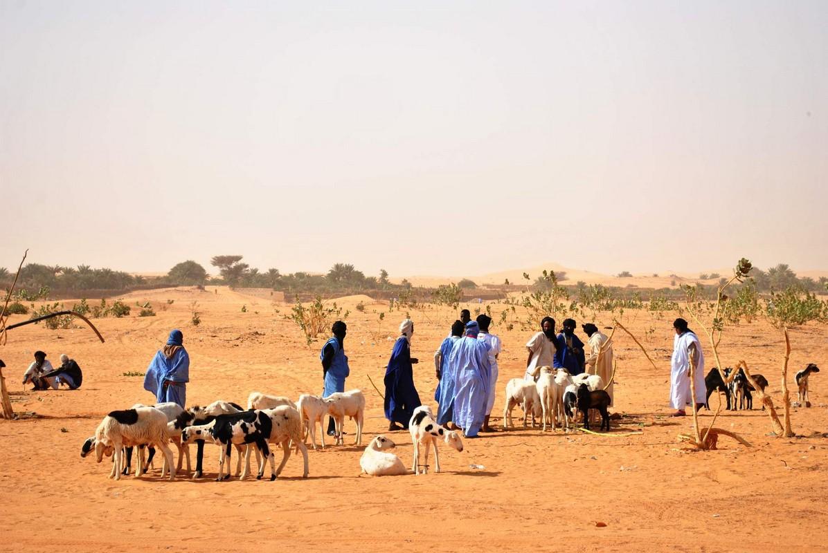 mauritánie leo seznamovací vlastnosti