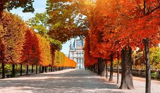 Paříž V Barvách Podzimu