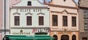 CONCERTINO ZLATÁ HUSA - Jindřichův Hradec
