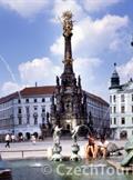 CENTRAL PARK FLORA - Olomouc