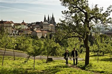 CAROL - Praha 9 - Libeň - NA SKOK V PRAZE (2)