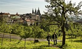 CAROL - Praha 9 - Libeň - TÝDENNÍ POBYT V PRAZE (6)