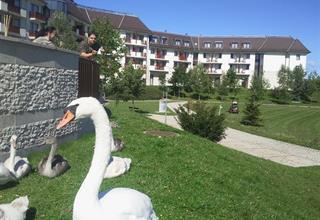 Greenfield Hotel Golf & Spa - Bükfürdö - REKREAČNÍ POBYT