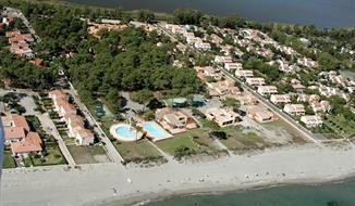 Adonis Borgo