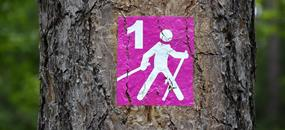 Nordic Walking na ostrově Menorca