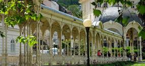 Rašelinový wellness pobyt v Karlových Varech - Hotel Čajkovskij