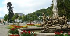 Slavnost růží v Badenu a Schönbrunn 2019