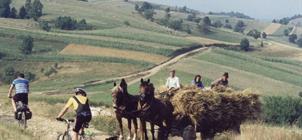 Panenskou přírodou rumunského Banátu, za českými krajany 2019 -