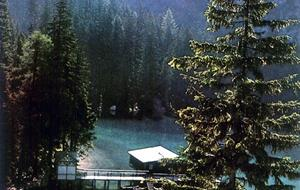 Zahrada Dolomit 2019