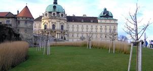 Klosterneuburg a Vídeň, mezinárodní výstava orchidejí 2020 ***