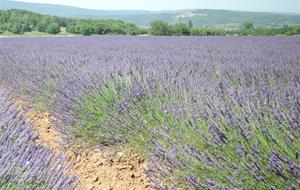 Provence a krásy Azurového pobřeží letecky 2020