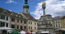 Burgenlandsko plné slunce, čápů a vína 2021