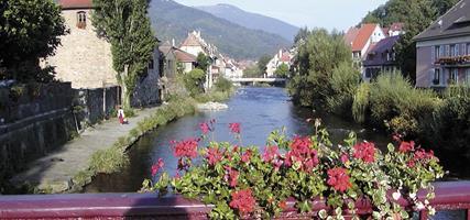 Alsasko,Schwarzwald, Vogézy, zážitky na vinné stezce 2021