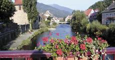 Alsasko,Schwarzwald, Vogézy, zážitky na vinné stezce 2022