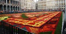Belgie, umění, památky UNESCO, gastronomické zážitky či květinový koberec 2022