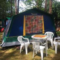 Camping Sabbiadoro - stany, autobusem