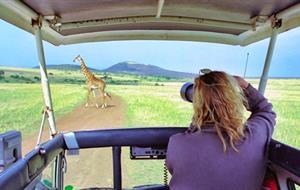 Safari v Tanzánii - Ngorongoro a Serengeti