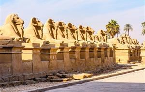 Památky Luxoru s českým průvodcem a pobyt u moře
