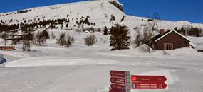 SKEIKAMPEN-běžky i sjezdovky v Norsku