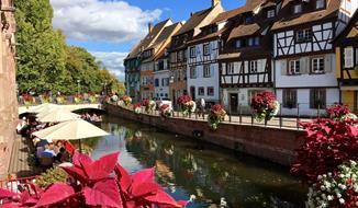 Romantické kouzlo Alsaska – kraje vína a krása chryzantém