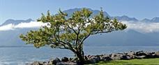 Autosalon Ženeva + krása přírody