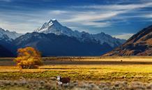 Nový Zéland - Středozem