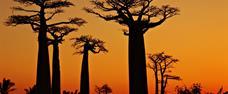 Madagaskar – velký okruh