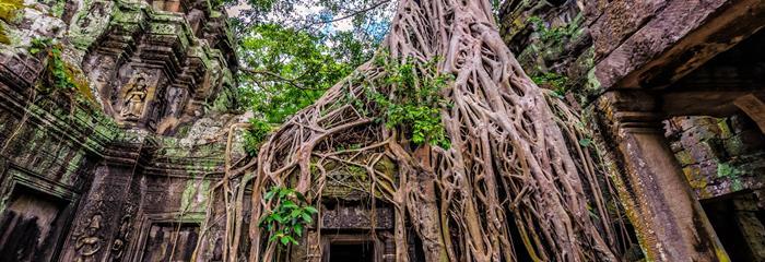 Saigon, Angkor, Pattaya