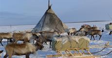Sibiř v zimě - nejexotičtější kmeny