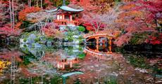 Japonsko - zlatá cesta a relax na Bali
