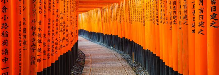 Japonsko - zlatá cesta a Havajské ostrovy