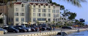 Hotel Osejava