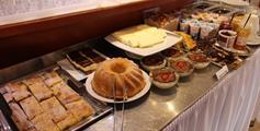 SPA & Wellness Hotel ORCHIDEA - Ubytování se snídaní