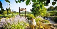 To nejkrásnější z Provence + AZUROVÉ POBŘEŽÍ